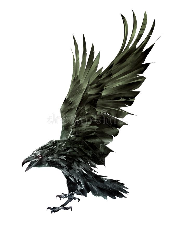 Art isolated raven bird flaps its wings royalty free stock image