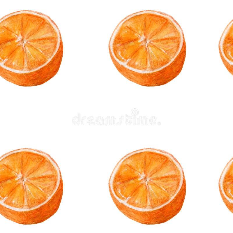 Art juteux d'aquarelle d'oranges Modèle sans couture tiré par la main avec des agrumes sur le fond blanc illustration de vecteur