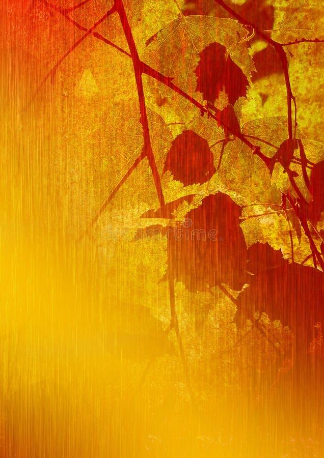 Art. Laatste bladeren op een berk. stock afbeelding