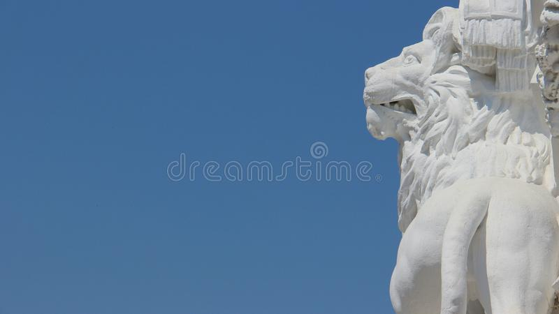 Art One White Lion With Blue Sky Backgrounds stock images