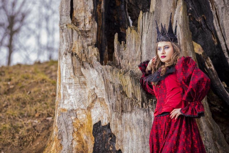 Art Photography Concepts Belle princesse médiévale féerique mystérieuse dans la robe rouge et la couronne noire en épi dans la fo photographie stock
