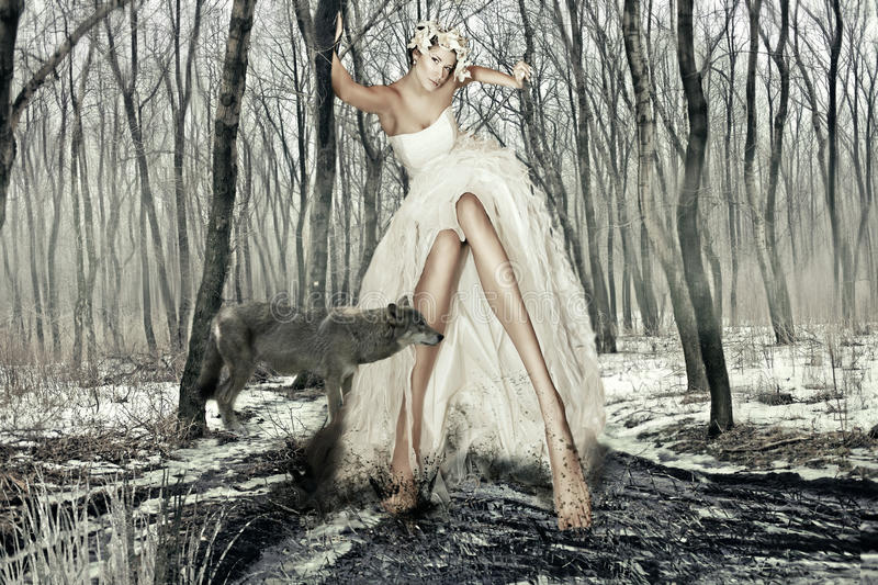 Art Photography Girl and the Wolf stock images