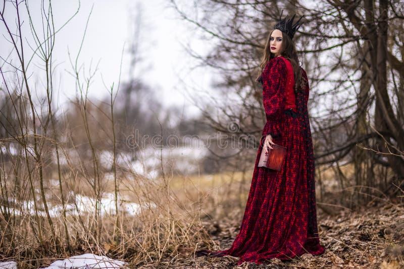 Art Photography Ideas Ursnygg och mystisk felik prinsessa i röd klänning och svart krona med den gamla boken Posera i skog arkivfoton