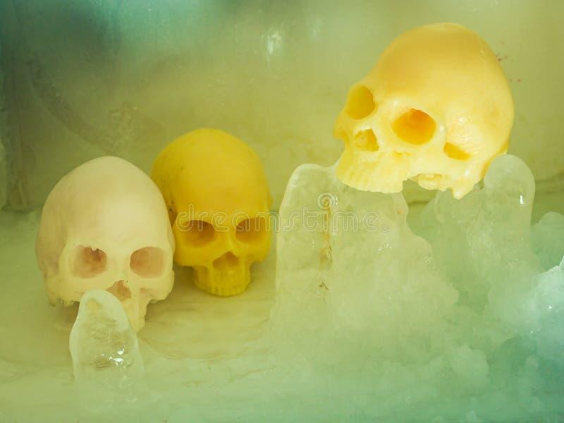 Art Skull fotografia stock libera da diritti