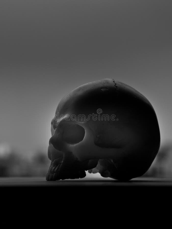 Art skull. Still life with silhouette human skull on sky background stock photos