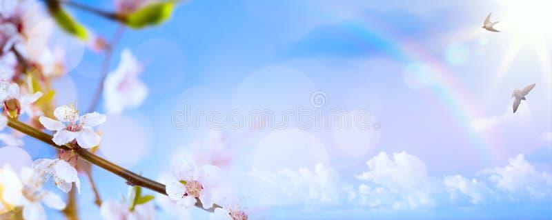 Art Spring blommabakgrund; Påsklandskap royaltyfri foto
