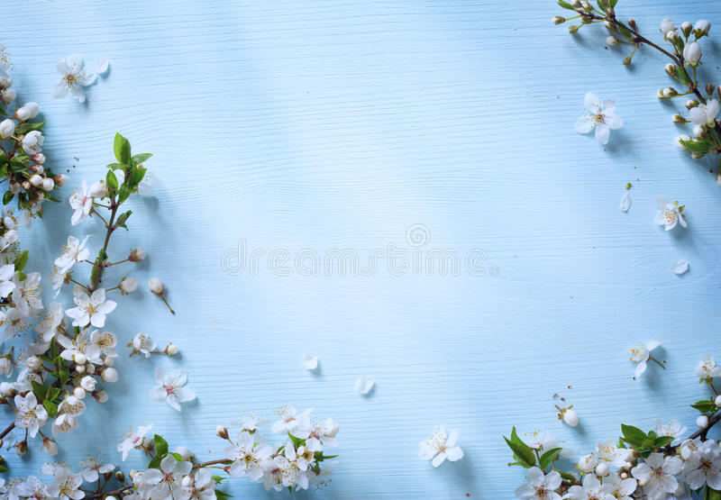 Art Spring border background with white blossom royalty free stock photos