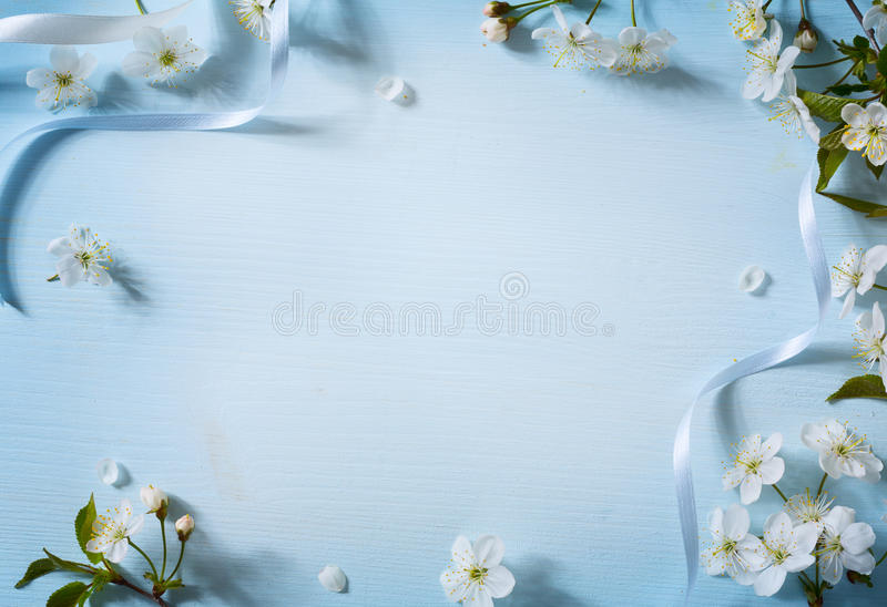 Art Spring flowers background with white blossom royalty free stock images