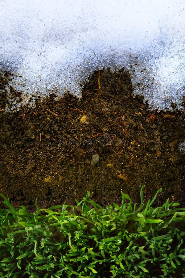 Art Spring Ground omvat met het ontdooien van sneeuw en groen gras stock afbeeldingen