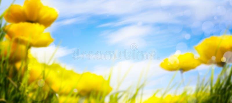 Art Spring-Hintergrund stockfoto