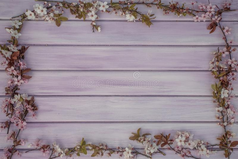 Art Spring wooden background with pink blossom royalty free stock images