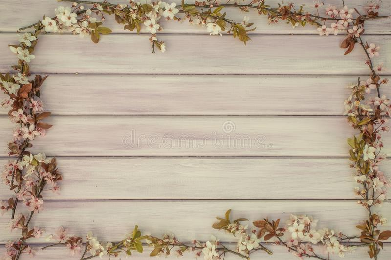 Art Spring wooden background with pink blossom stock image