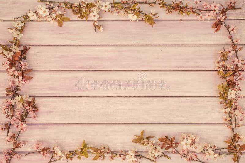 Art Spring wooden background with pink blossom stock photos