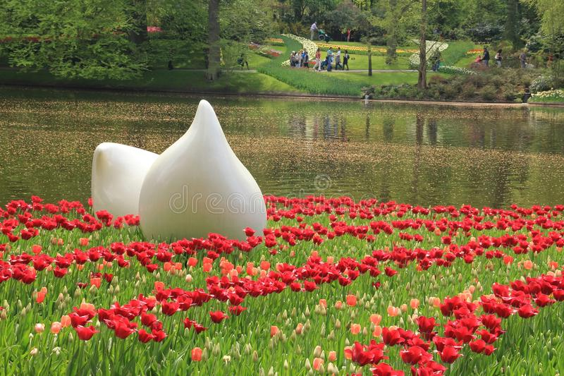 Art, two huge flower bulbs in the flower garden Keukenhof in spring. Art, two huge flower bulbs between tulips in one of the gardens in world`s largest flower royalty free stock photos