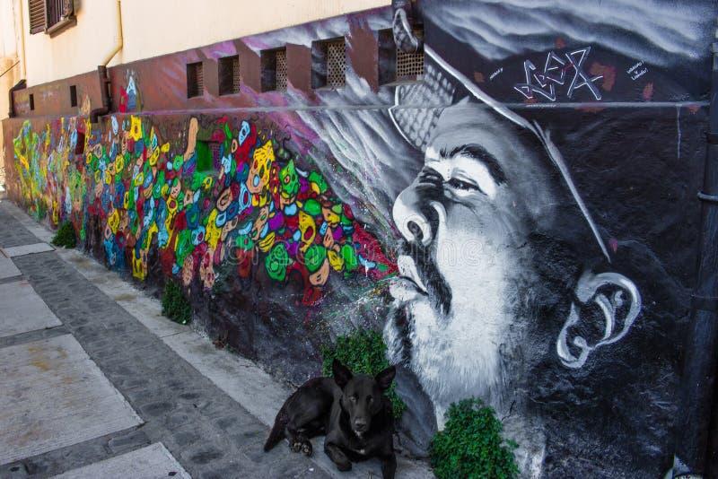 Art Valparaiso de rue image libre de droits
