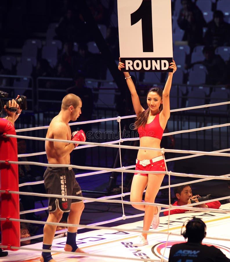 Art of War Fighting Championship 15. stock photography