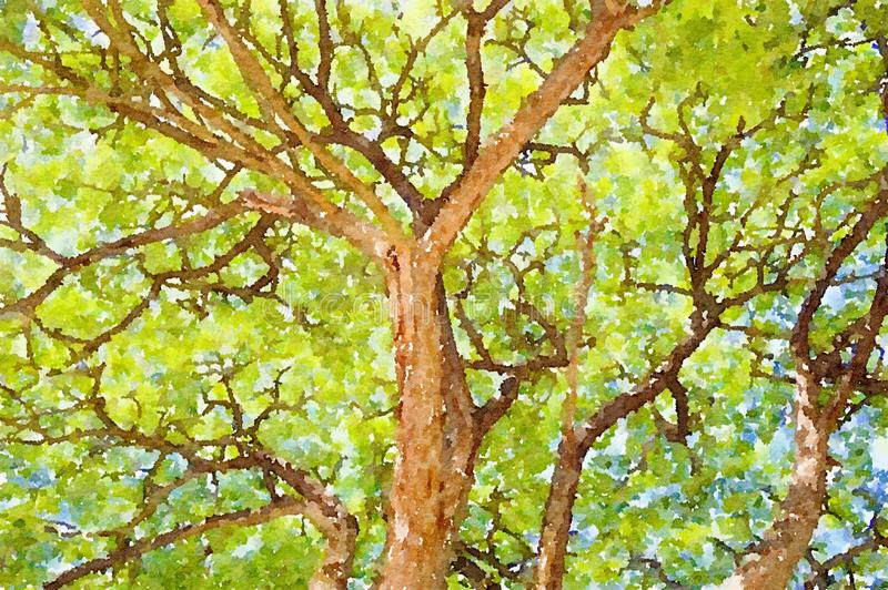 Watercolor of large tree in garden stock photography