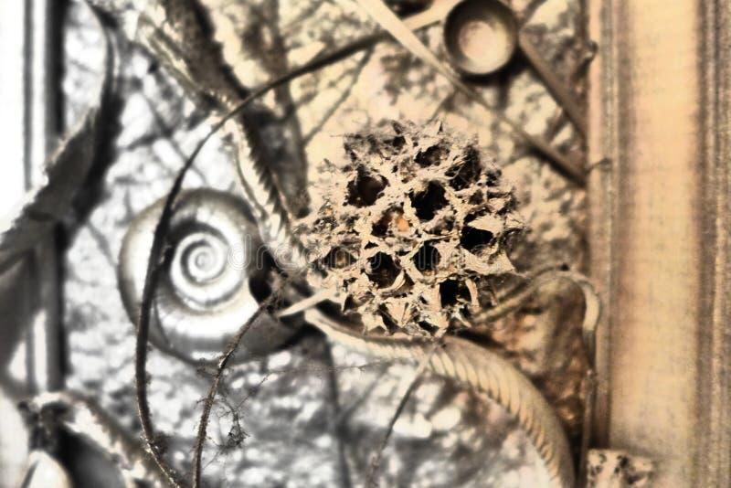 Arte abstracto 2 imagen de archivo