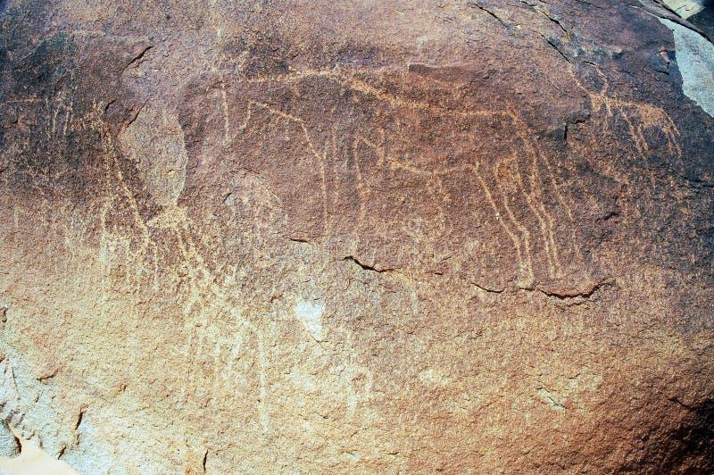 Arte antiguo de la roca en Niger que representa animales fotografía de archivo