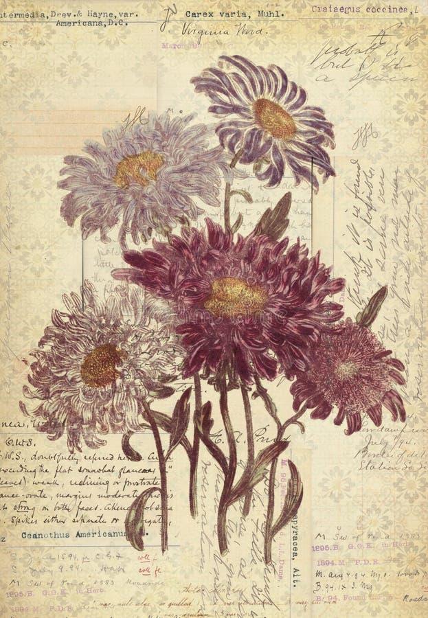 Arte d'annata botanica della parete di stile dei fiori con fondo strutturato