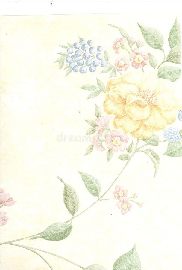 arte da flor e da folha fotos de stock