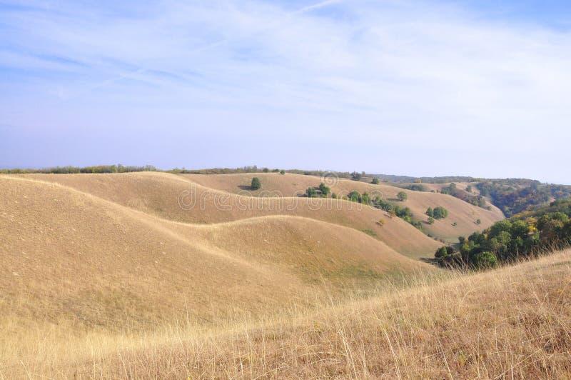 Arte da natureza Dunas em areias de Deliblato fotos de stock