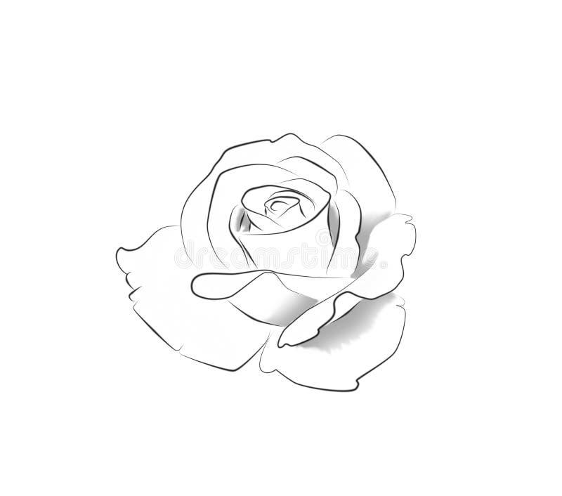 Arte da tatuagem: A lápis desenho de uma rosa ilustração stock