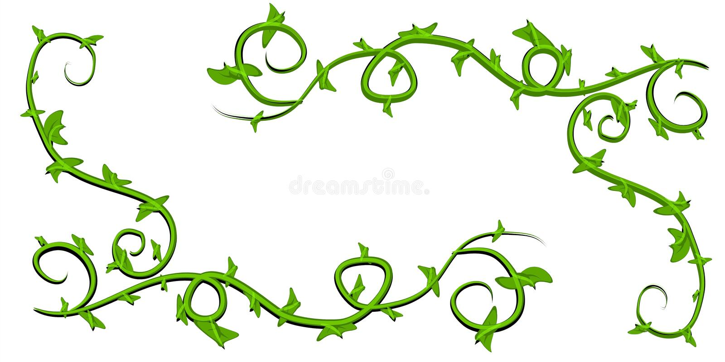 Arte de grampo frondosa verde das videiras ilustração do vetor