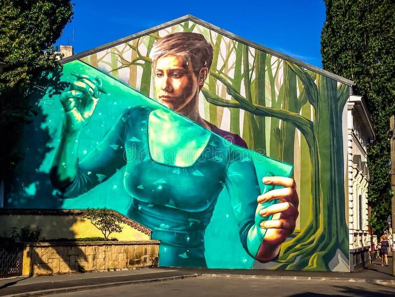 Arte de la calle de la pintada en Bucarest imagenes de archivo
