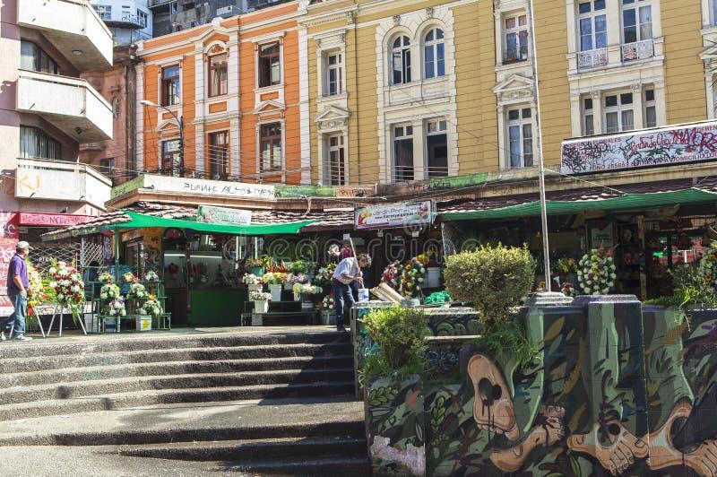 Arte dei graffiti della città di ValparaÃso nel Cile fotografia stock