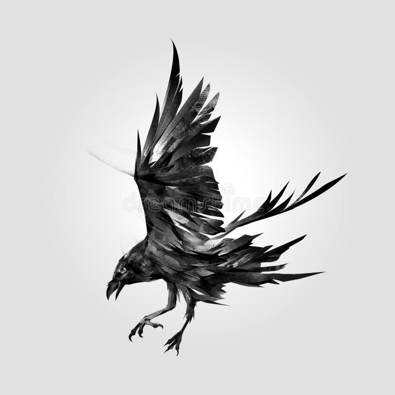 arte del cuervo del pájaro que ataca stock de ilustración