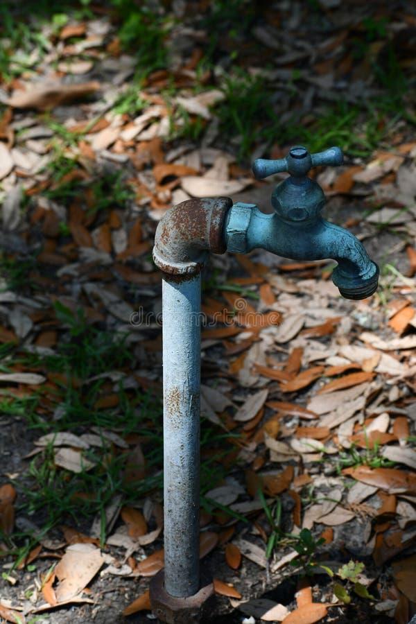 Arte del giardino - rubinetto con le foglie immagini stock libere da diritti