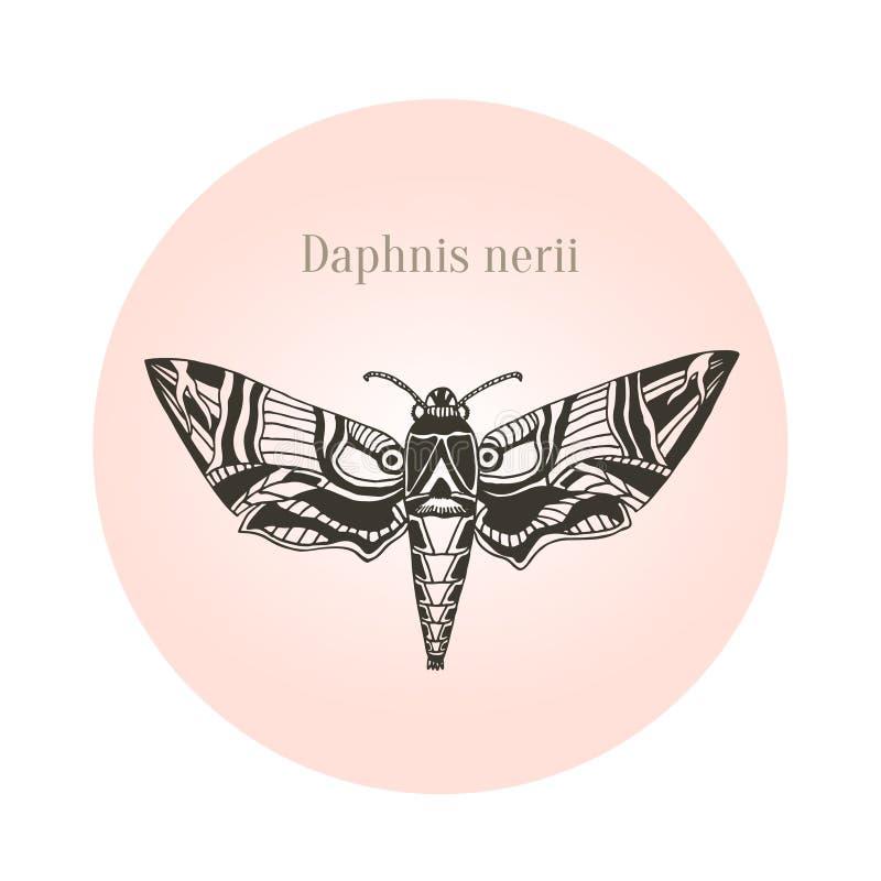 Arte del tatuaje de la polilla de halcón del adelfa Nerii de Daphnis Ilustración del vector stock de ilustración