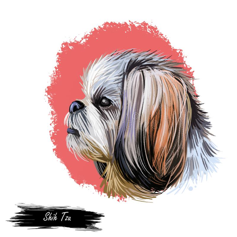 Arte digital del animal doméstico del juguete del perro de revestimiento de Shih Tzu Pequeño primer del retrato de la acuarela de ilustración del vector