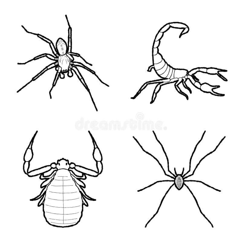 Arte disegnata a mano del fumetto dell'illustrazione animale di vettore dell'aracnide illustrazione di stock