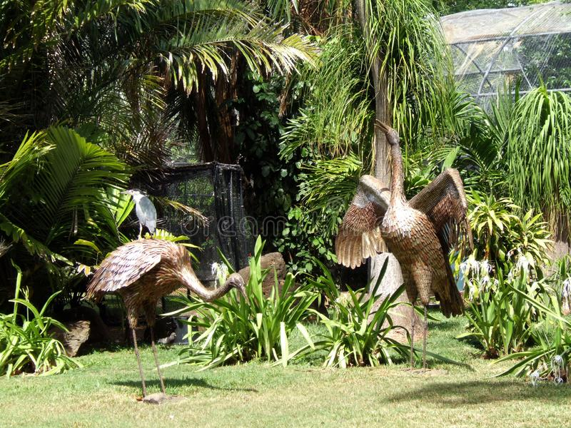 Arte do guindaste no jardim zool?gico de Hava imagens de stock royalty free