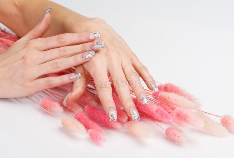Arte do prego e pontos cor-de-rosa da decoração imagem de stock royalty free