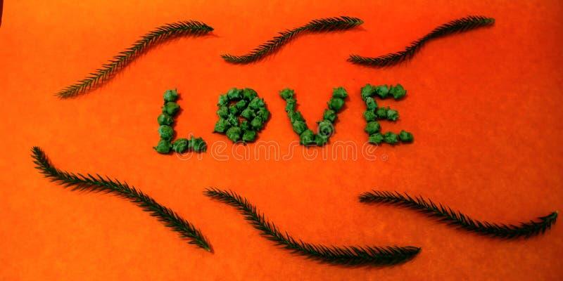 A arte do texto do amor usou a foto conservada em estoque do objeto natural ilustração stock