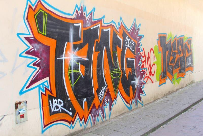 Arte e graffiti della via nella vecchia città di Vilnius, Lituania fotografia stock