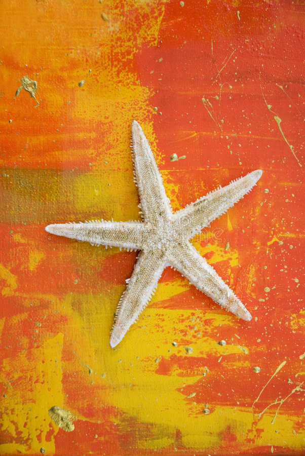 Arte -final com starfish imagem de stock royalty free