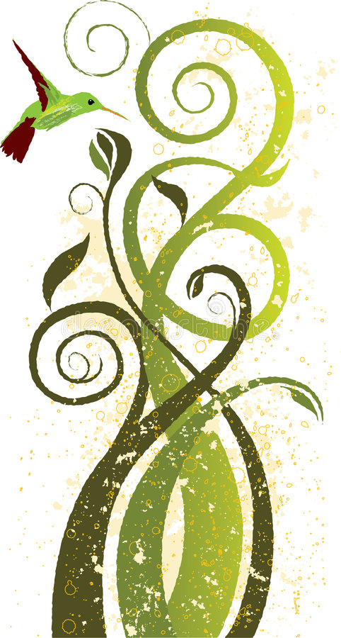 Arte floral do colibri ilustração royalty free