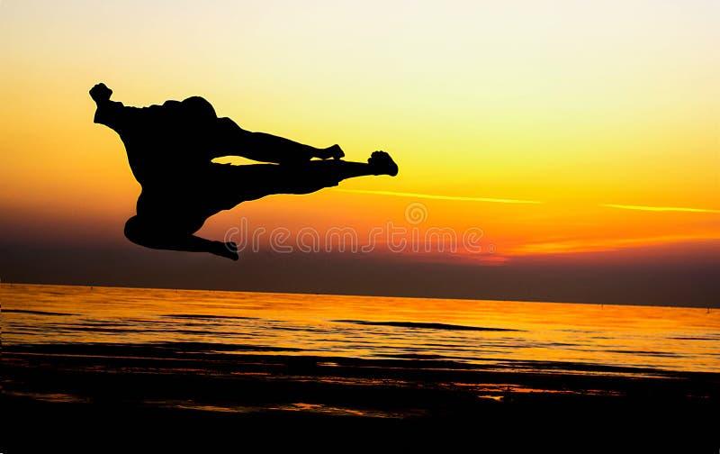 Arte marcial do pontapé imagens de stock royalty free