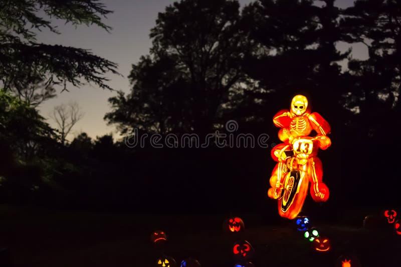 Arte scolpita della zucca: Scheletro su un motociclo immagine stock libera da diritti