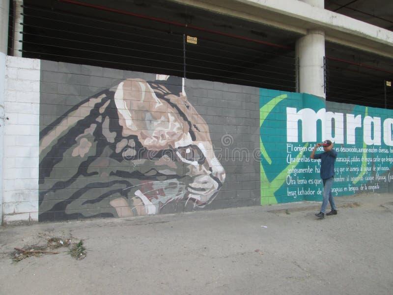 Arte urbana em Ámérica do Sul Cunaguaro e adolescente fotografia de stock royalty free