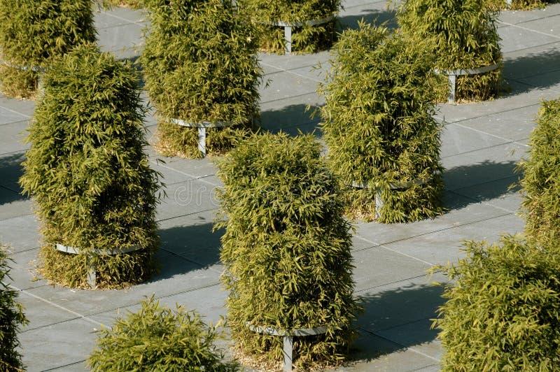 Arte urbano foto de archivo