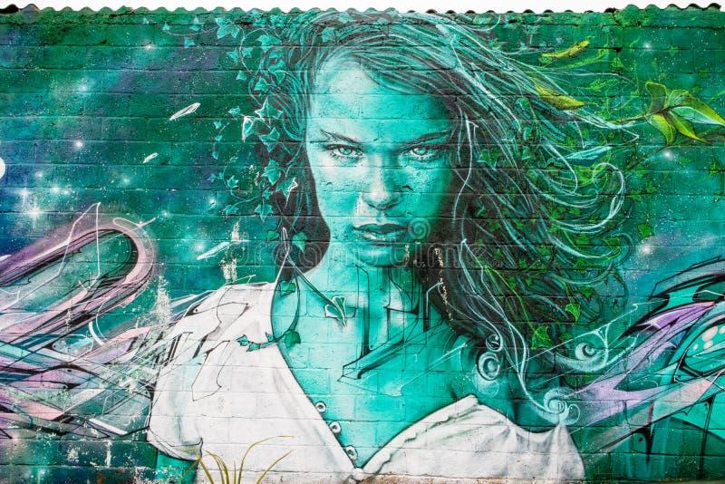Arte variopinta dei graffiti della pittura della via immagini stock