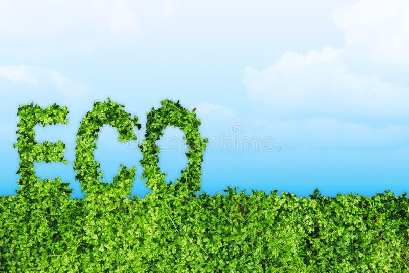 Arte verde di concetto di giornata per la Terra di Eco con spazio immagine stock