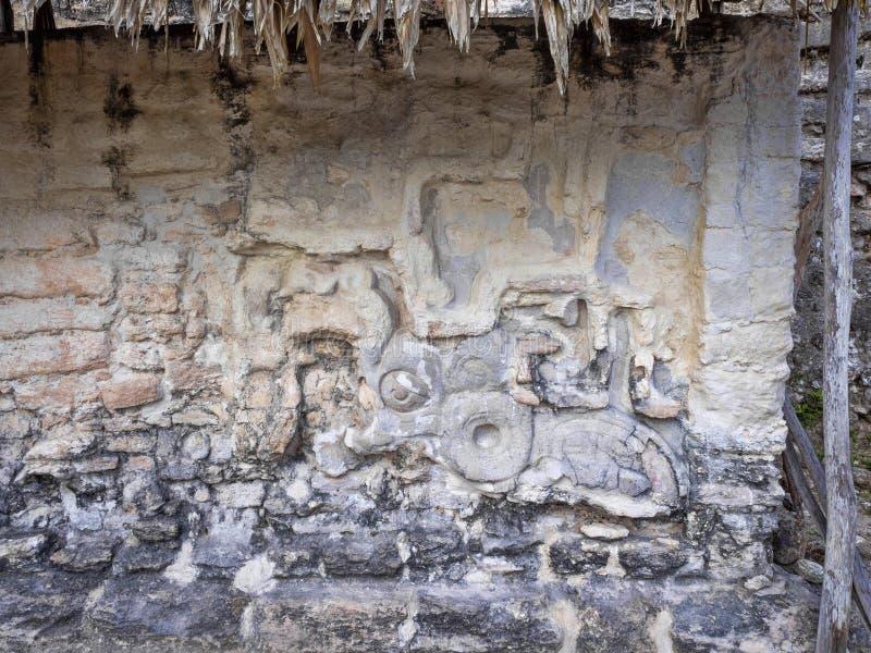 Artefactos de piedra de la ciudad maya más significativa de Maya Nation del parque de Tikal, Guatemala imagenes de archivo