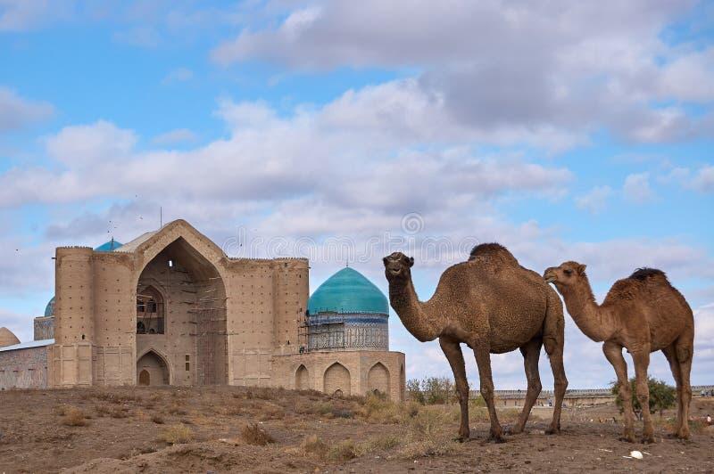 Arten der Stadt von Turkestan stockfotos