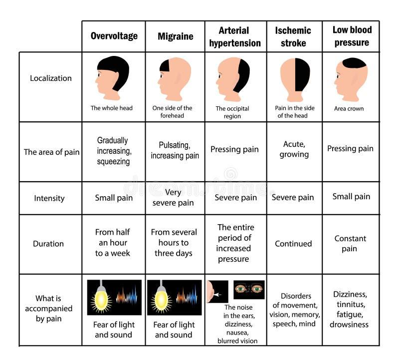 Arten von Kopfschmerzen antreiben tabelle Infographics Vektor-Illustration auf Hintergrund vektor abbildung